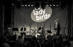 11 Jahre The Ladybirds