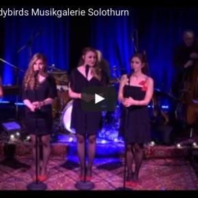 Videos vom Jubiläumskonzert